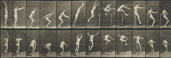 Eadweard Muybridge, Animal Locomotion, 1872-1885, A collection of 50 collotypes, £15,000 - 20,000