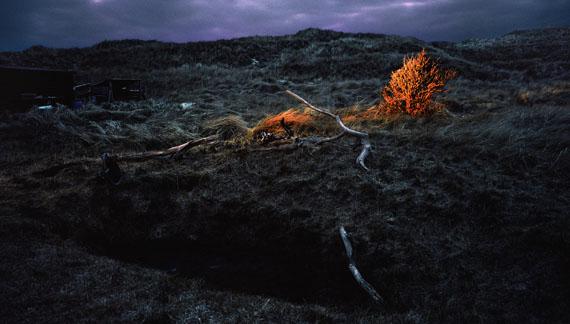 Anja Jensen: Country Site, 2011