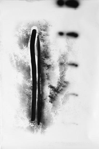 Raphael Hefti: #1 Untitled (Lycopodium), 2011