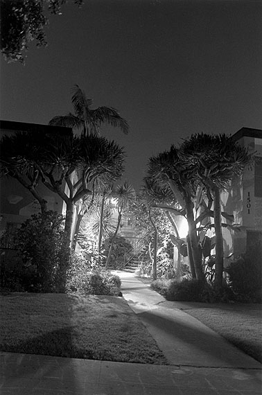 Night Walk No.  23
