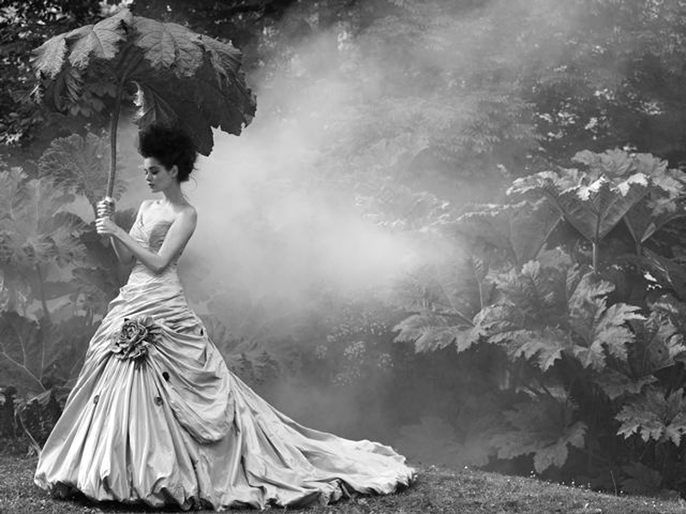 © Sheila Rock 'Garden Mist' 2012