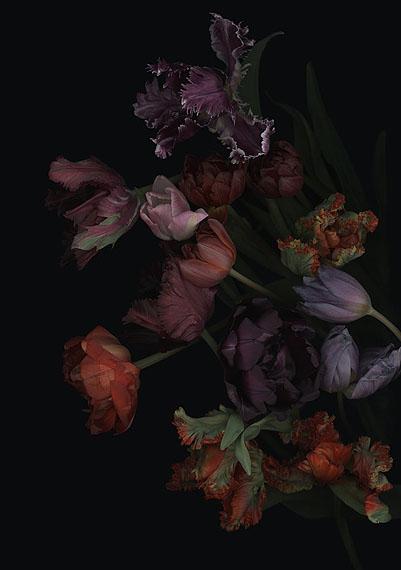 Luzia Simons  Stockage 119, 2011 180 x 126 cm Scannogramm; Lightjet Print /Diasec Ed. 5