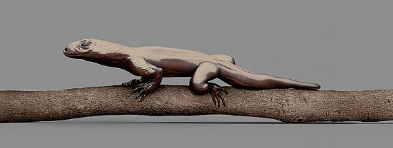 MONITOR LIZARD [Varanus imitabilis] Mimetic lizard © Vincent Fournier