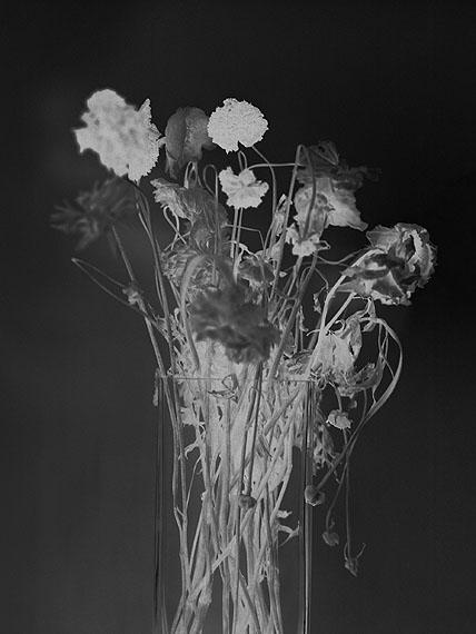 © Anais Boudot