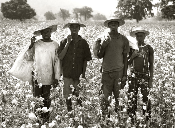 Cotton Farmers, Koulegou Field, Tanguieta, Benin, 2011 © Albert Watson