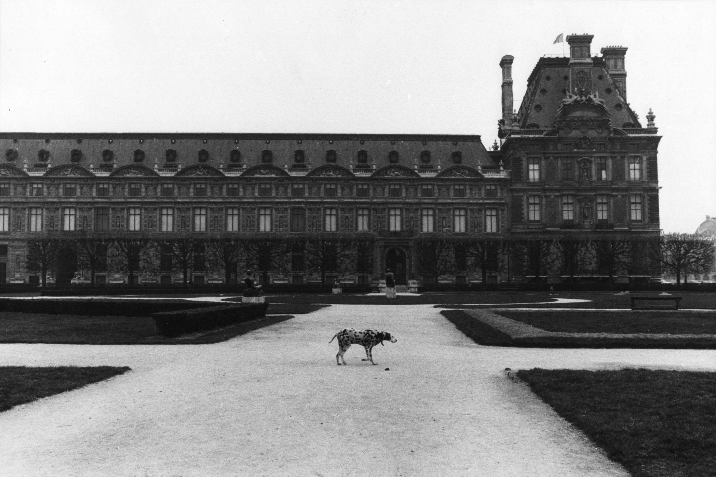 Sibylle Bergemann, Paris, 1979