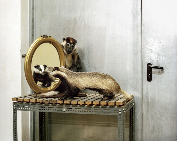 © Klaus Pichler/AnzenbergerAgencybadger and monkey at the Museum of Natural History ViennaInkjet-Print on Hahnemühle Photo Rag Ultra Smooth55 x 70, 80 x 100 cm