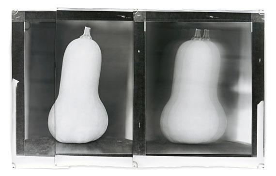 """Jeff Cowen: """"Nature Morte 27"""", 2013, Silbergelatineabzug, Mischtechnik, Ed. 6, 152 x 244 cm © Jeff Cowen, BerlinCourtesy Galerie Michael Werner Märkisch Wilmersdorf, Köln & New York"""