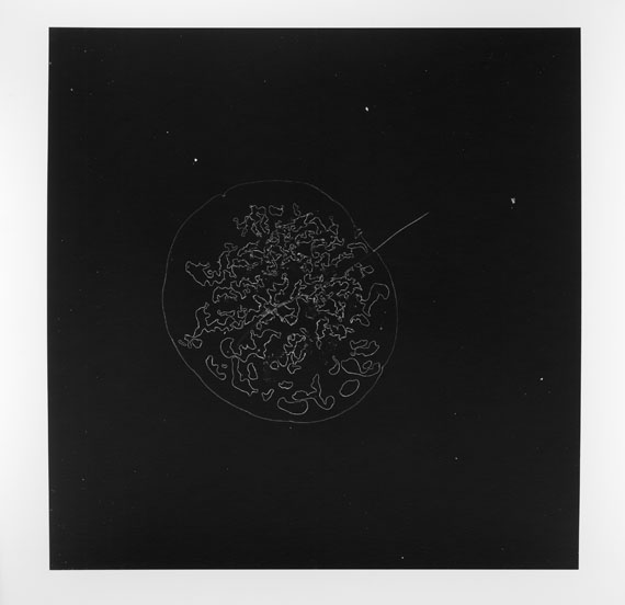 Esther MATHIS Untitled 01, 2013Gelatin Silver Print of a hair sample.33,7 x 28,7 cm ( 13 1/4 x 11 1/4 in. )Edition of 3, plus 1 AP