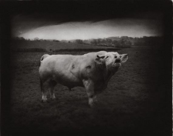 Jean-Michel Fauquet: Untitled 2009, Pigment print, 112 x 90 cm, Ed. 10  © CONRADS Düsseldorf