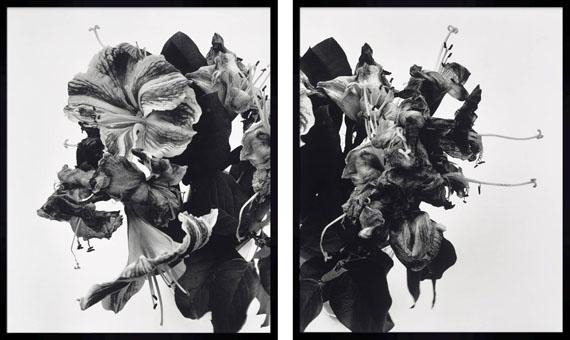 Lot 57NOBUYOSHI ARAKI (BORN IN 1940)From Close to Range, Diptych, 19912 gelatin silver prints€ 70,000 – 90,000