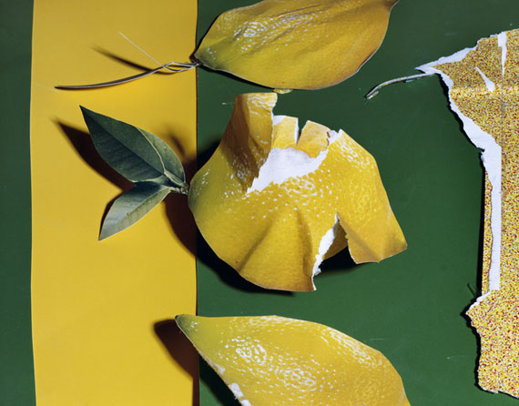lemons 2013 © Daniel Gordon, courtesy of  wallspace new york