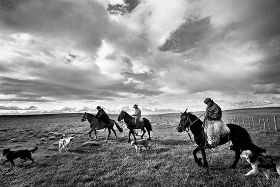 Kadir van Lohuizen: Estancia Cameron, Tierra del Fuego, Chile - 'Sheep boys' © Kadir van Lohuizen | NOOR