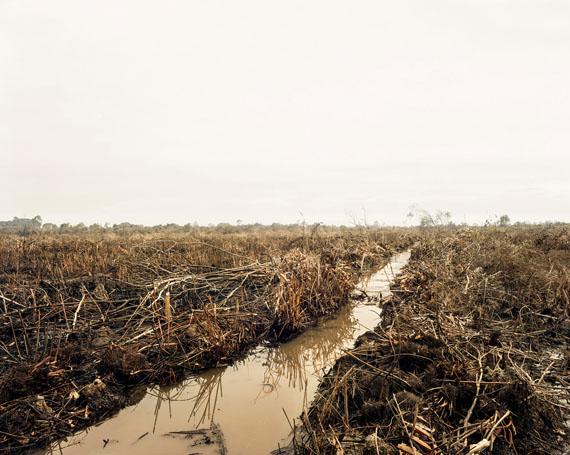 Olaf Otto Becker: Slash and Burn 03, Riau area, Sumatra, Indonesia, 10/2013