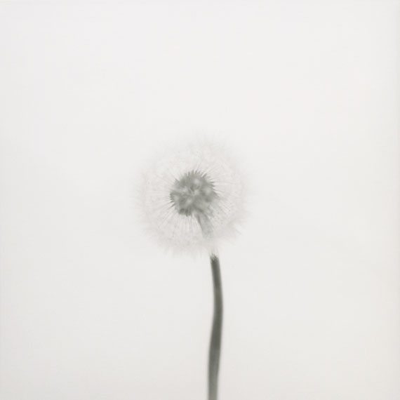 """© Arno Schidlowski, """"Der Sonne Mond #20"""", 2013"""