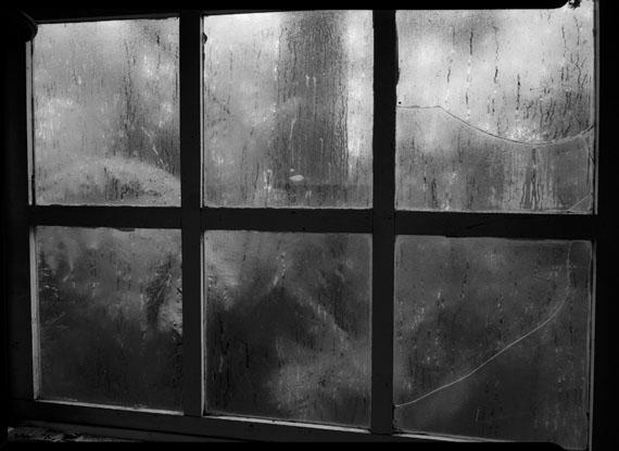 © Kate Baker: 'Fogland' Yarra Valley 2010