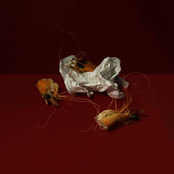 Delphine Burtin: Disparition, 2013, 60 x 60 cm, Edition 8