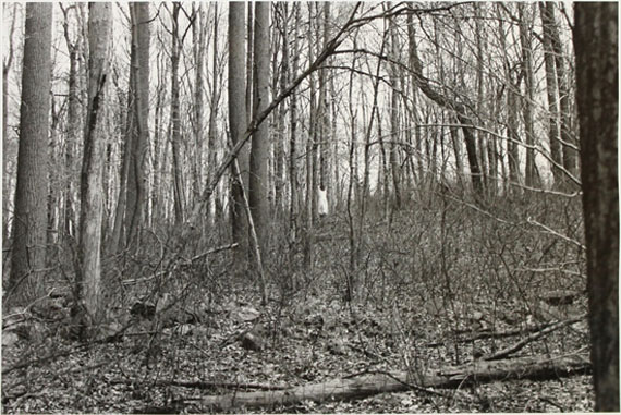 Robert Gober