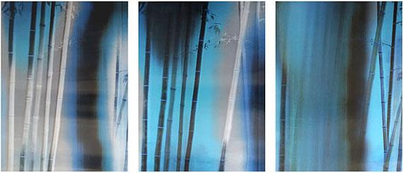 HAN Lei: Bamboo No.1 (2015) Lenticular photograph. 120cm x 90cm x 3 panels.