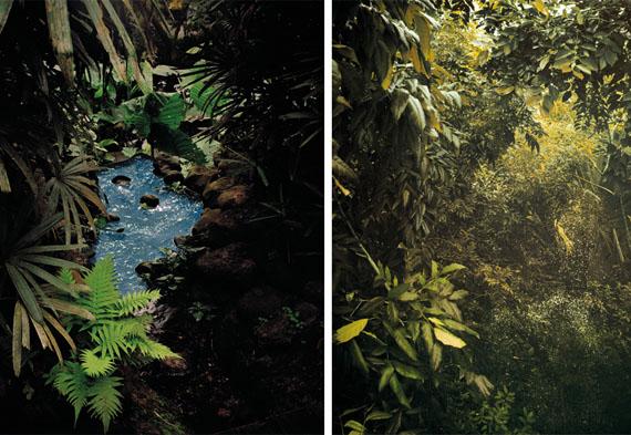 Douglas Mandry | Paradis , 2013 | Archival Pigment Print | 86 x 111 cm | Edition 7 & 2AP