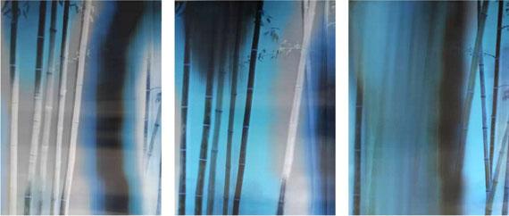 Bamboo No.1, 2015Lenticular photograph, 120cm x 90cm x 3 panels© Lei Han, courtesy M97 Gallery