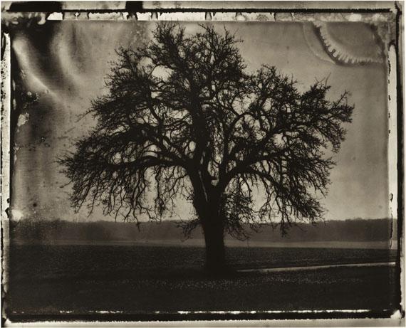 Sarah Moon: Der Birnbaum, 1992 © Sarah Moon