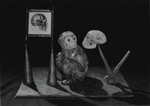 "Michel Medinger: ""About Darwin"", 2013, Gelatin Silver Print"