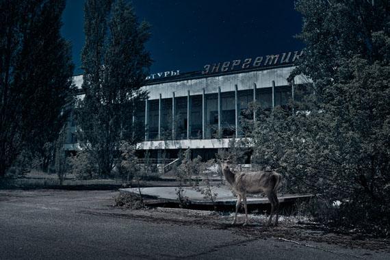 Noorderlicht Photofestival 2016 - ARENA