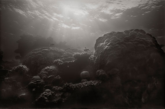 "Gregor Törzs: ""Ultramarine Reef"" © Courtesy of Bernheimer Fine Art Photography"