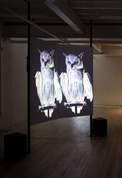 Oracles, Owls .. Some Animals Never Sleep (2012-14) © Ann Lislegarrd