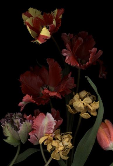 Luzia Simons (BRA)Stockage 147, 2014Scannogramm, pigmentjet on handmade paper193 x 121 cm, Edition of 6 + 2AP