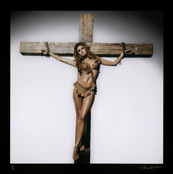 Lot 4260