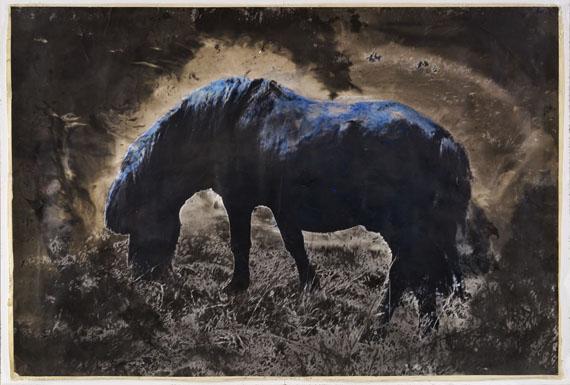 Johannes Brus: Blaues Pferd, 1979/85