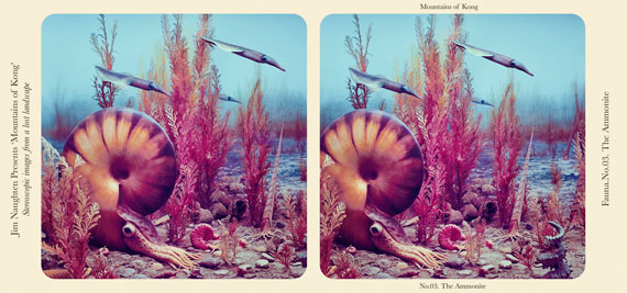 The Ammonite © Jim Naughten, courtesy Michael Hoppen Gallery