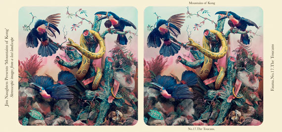 The Toucans © Jim Naughten, courtesy Michael Hoppen Gallery