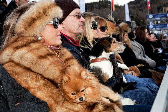 "From ""Luxury"". Snow Polo World Cup. St Moritz. SWITZERLAND 2011
