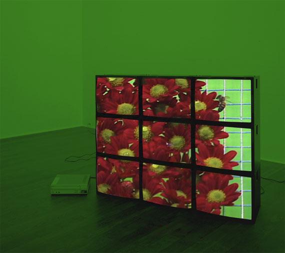 "installation view Diana Thater ""Continuous. Contiguous y Red Flowers"" de la artista, FotoMéxico2017."