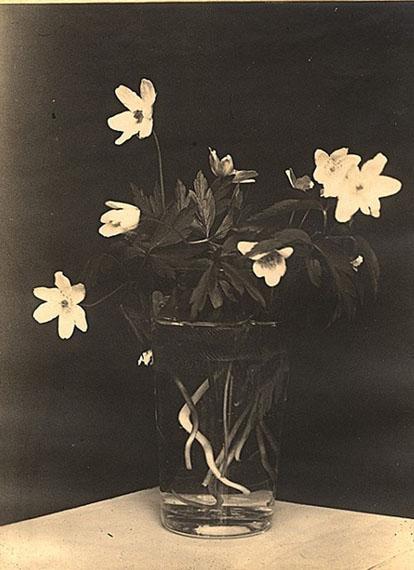 Ilse Bing, Flowers (Ostern), 1928, gelatin silverprint,vintage print, 11,4 x 7,9 cm / 4 1/2 x 3 inCourtesy Galerie Karsten Greve Paris, Cologne, St. Moritz
