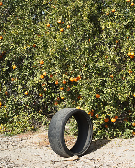 "Ron Jude: ""Citrus #1 (w/Tire)"", 2013, from the series ""Lago"", Archival Pigment Print, 64 x 78 cm"