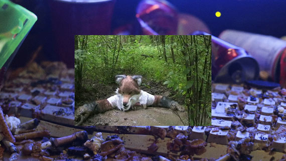 Still Life (Betamale), Videostill, HD-Video, 4:54 Min., 2013 © Jon Rafman