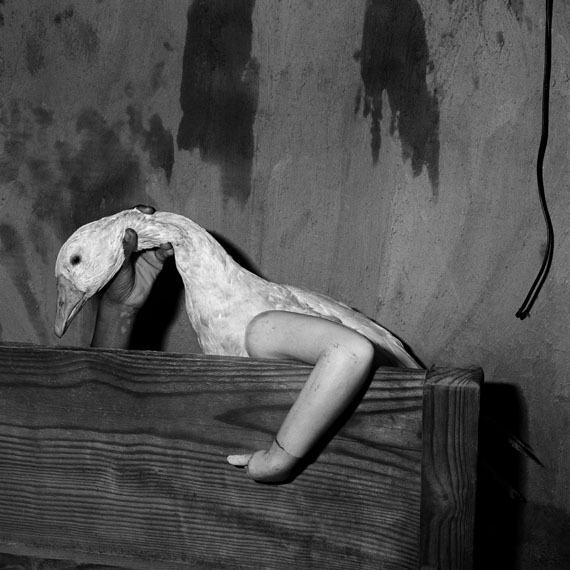 Roger BallenOne arm goose, 2004Shadow Chamber
