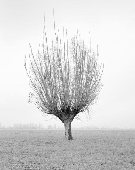 "Paola De Pietri: No title (02), from the series ""Questa Pianura"", 2014© Paola De Pietri"