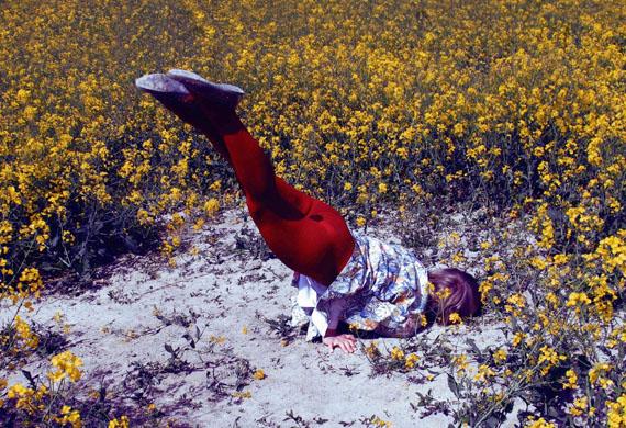 """Isabelle Wenzel: Field 1, 2015, aus der Serie """"Field Studies""""  © Isabelle Wenzel"""
