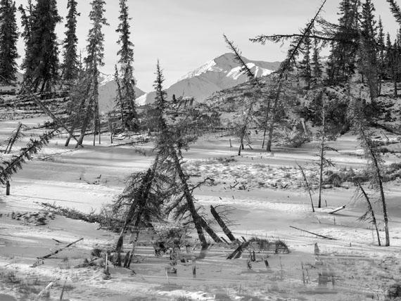 Benedikt Partenheimer - 'Drunken Forest 02', from the series 'Memories of the Future'