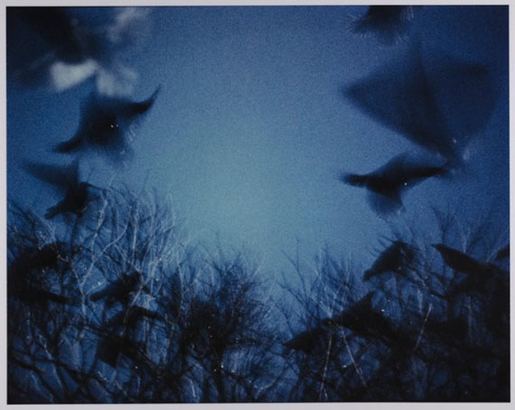 Untitled 1985, from the series Ravens Scenes © Masahisa Fukase Archives