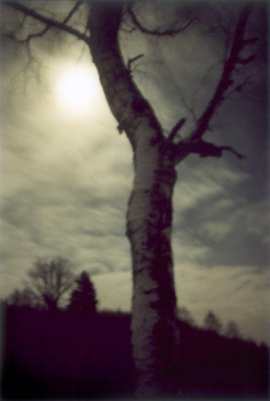 """Jitka Hanzlová: aus der Serie """"Forest"""" 2000-2005 © Jitka Hanzlová/VG Bild-Kunst, Bonn 2018"""