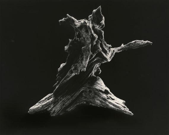 "Yamamoto MasaoShizuka=Cleanse #3037 ""Dance [E]""201445 x 56 cmsilver gelatine print© Yamamoto Masao"