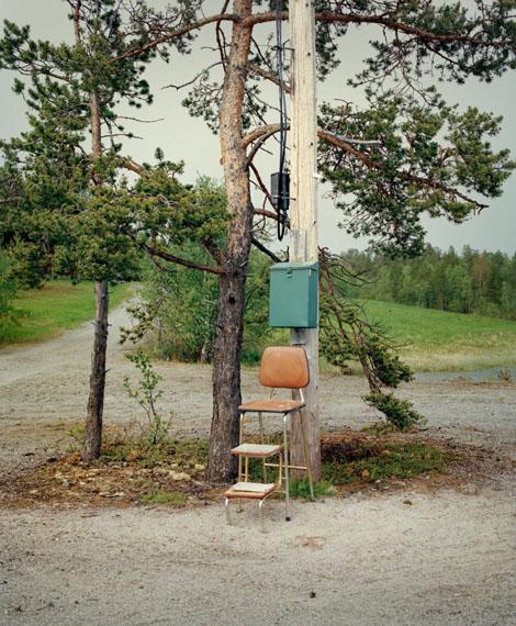 Boreal Tree 7, Norwayfrom the series Borealis, 2016© Jeroen Toirkens/Kahmann Gallery