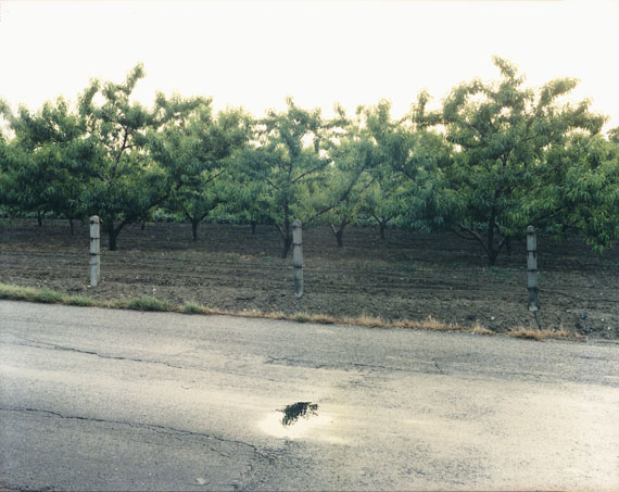 Guido Guidi