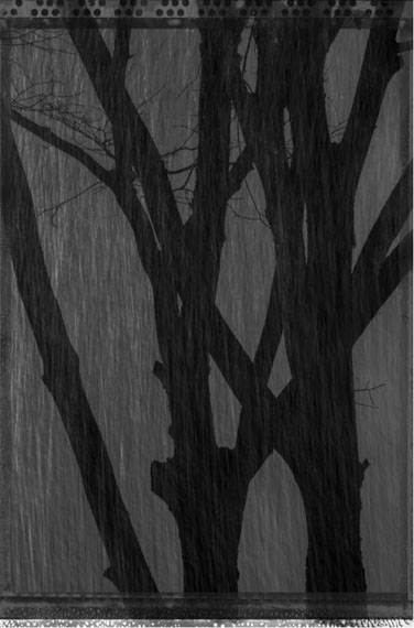 from Street Of Broken Heart © KIM JungMan